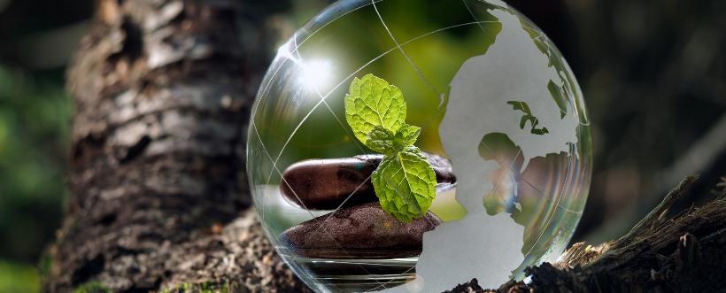 defensores ambientales
