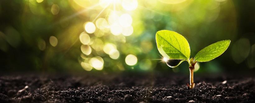 política ambiental
